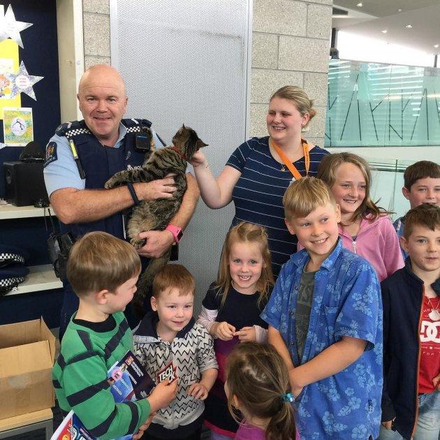 На службу в полицию Новой Зеландии берут котов