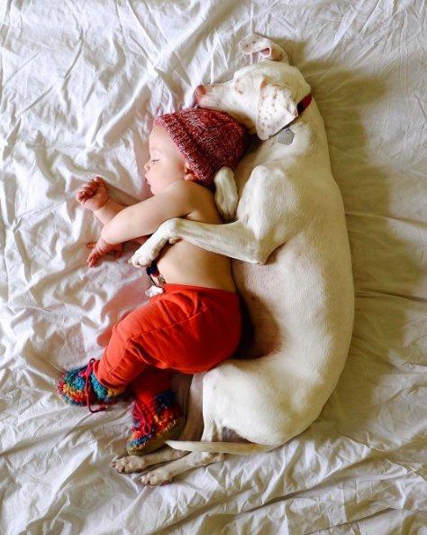Трогательная дружба ребенка и собаки. Фото
