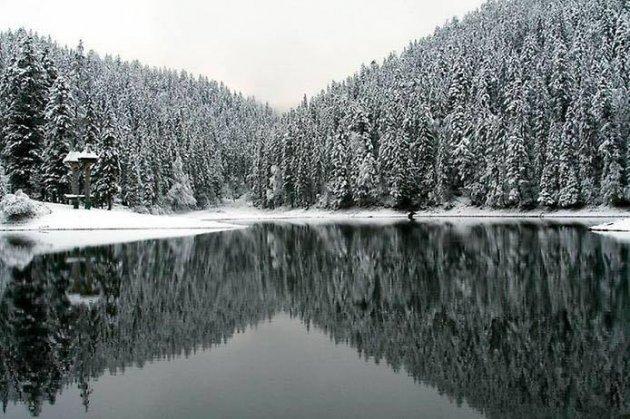 Чудесные снимки заснеженных Карпат. Фото
