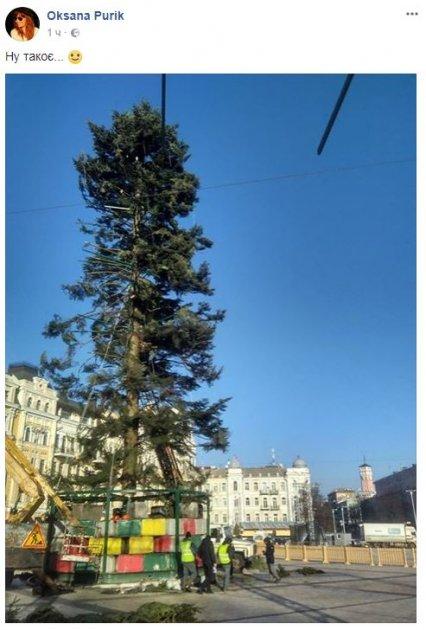Украинцев ужаснула главная елка страны