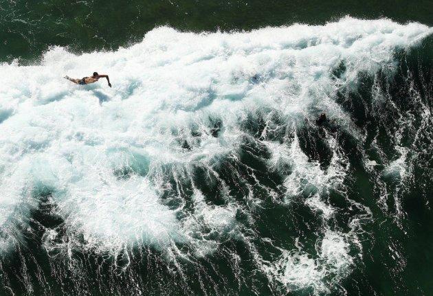 Getty показало самые необычные снимки уходящего года. Фото
