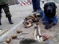 В Авдеевке служебный пес помог обезвредить российский дрон со взрывчаткой