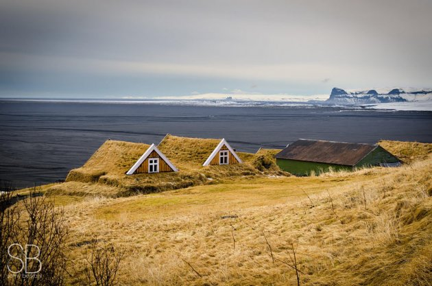 Любимые дома скандинавов: избушки с травяной крышей. Фото