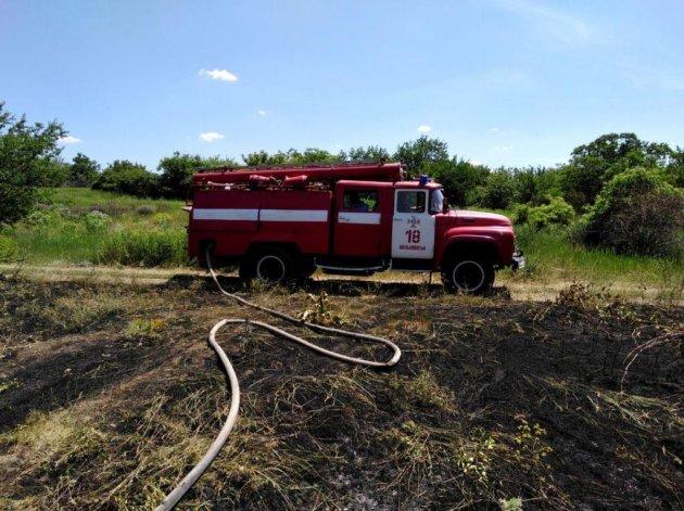 На Запорожье бушуют масштабные пожары. Фото