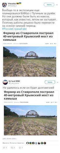 В Сети высмеяли Крымский мост, построенный российским фермером