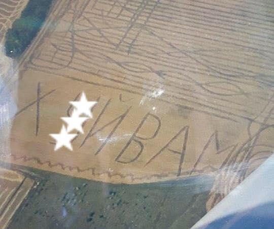 В Одесской области на поле выстригли огромную нецензурную надпись