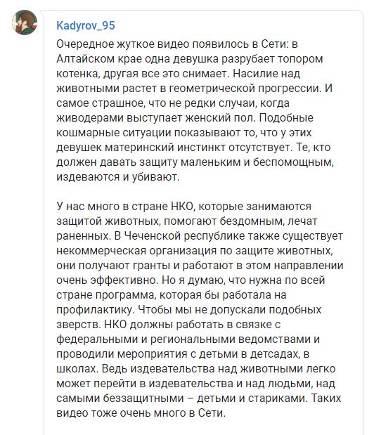 В России дочь чиновника зарубила котенка