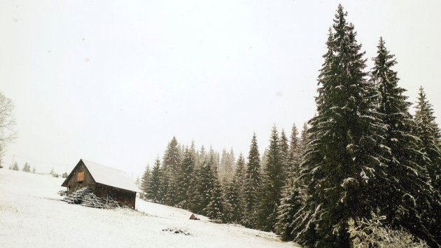 В Карпатах знову випав сніг