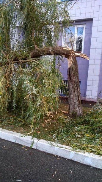 У Києві потужний вітер наробив безладу. Фото